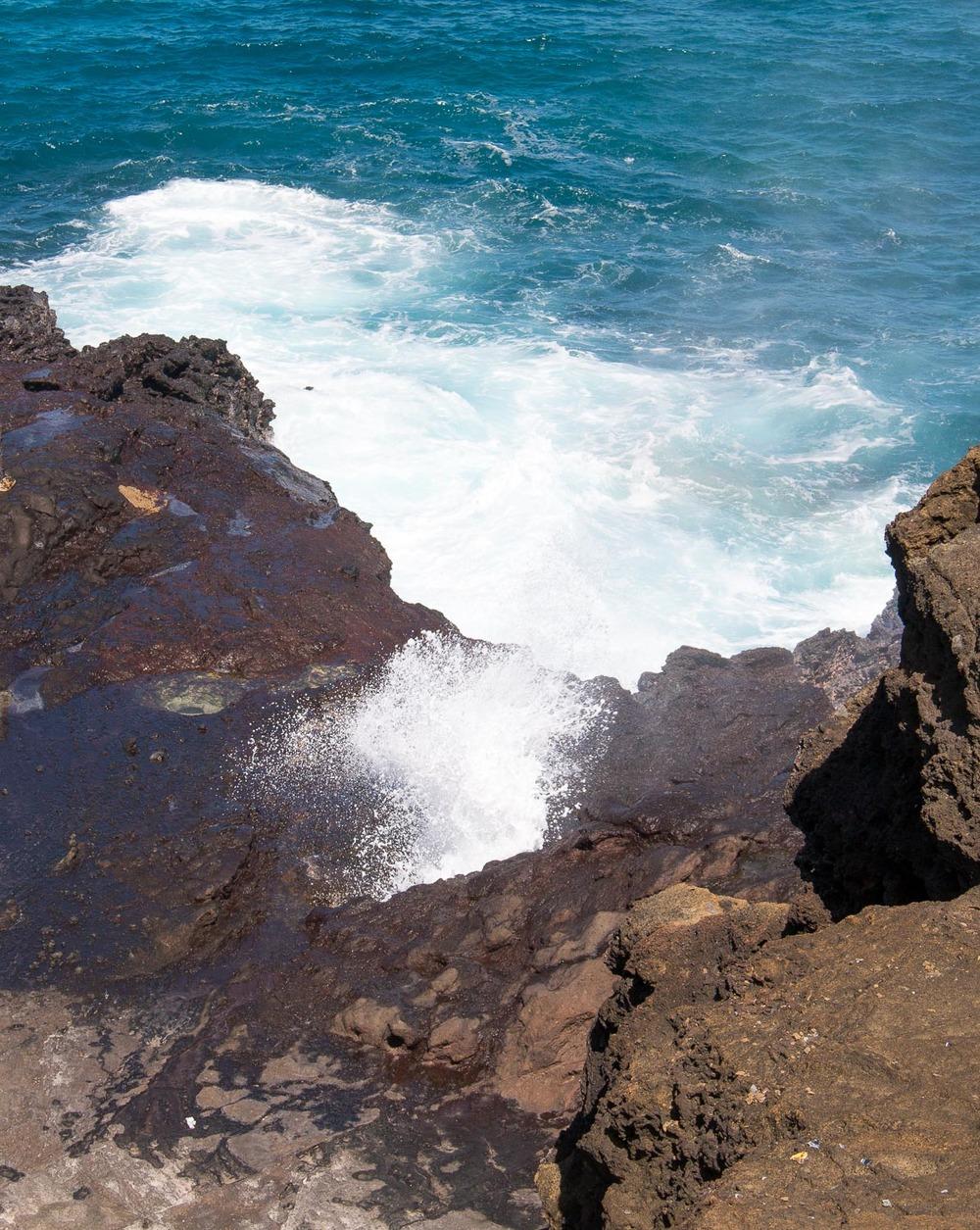hawaii july 2016-66.jpg