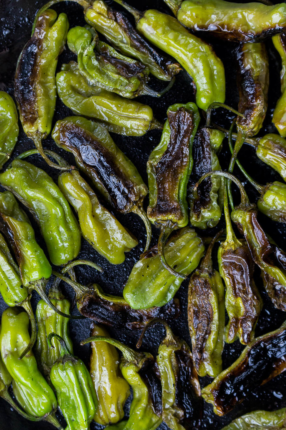 roasted-shishitos-2.jpg