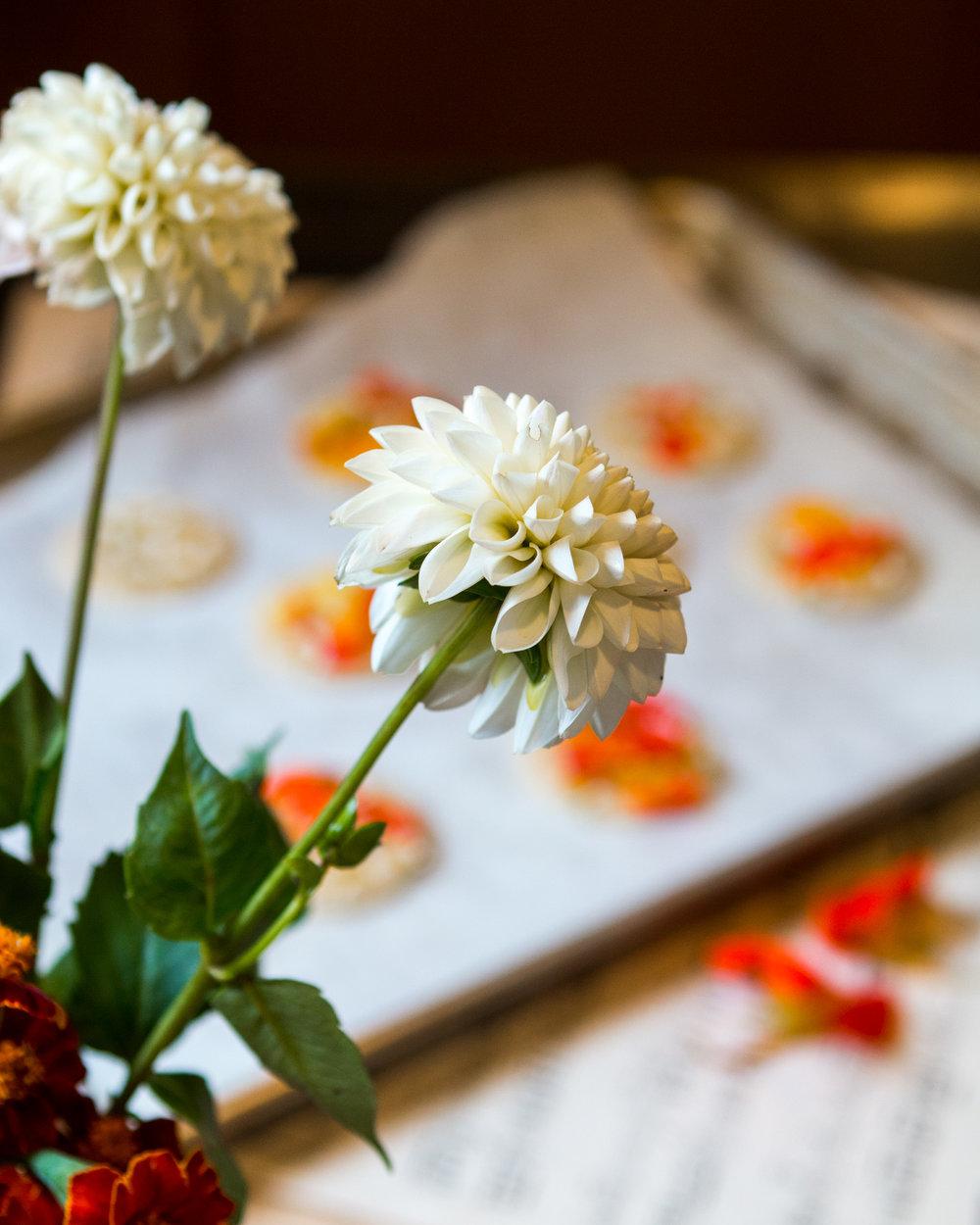 lemon-shortbread-edible-flowers-6.jpg