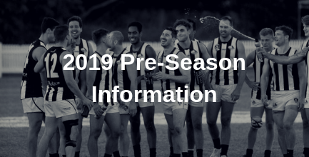 2019 pre-season.png