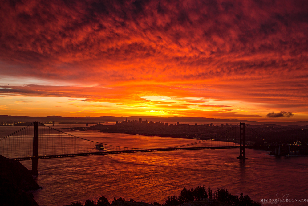 Fusion_San-Francisco-Golden-Gate-Bridge_California_large.jpg