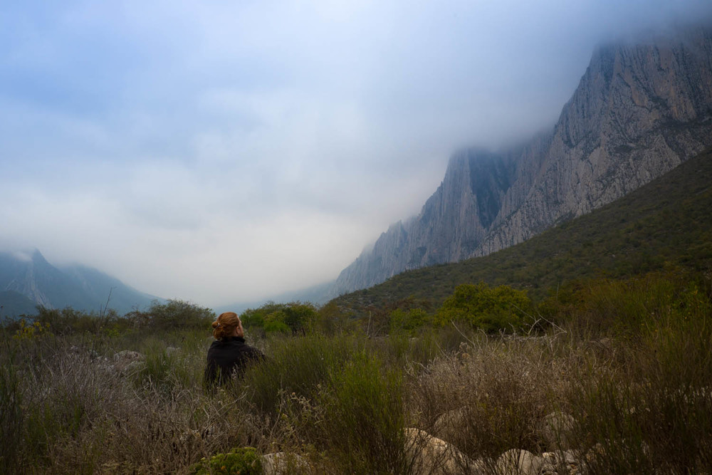 Getting artsy and blown away by how seriously big and climbable those cliffs are....in Parque La Huasteca, Mexico.