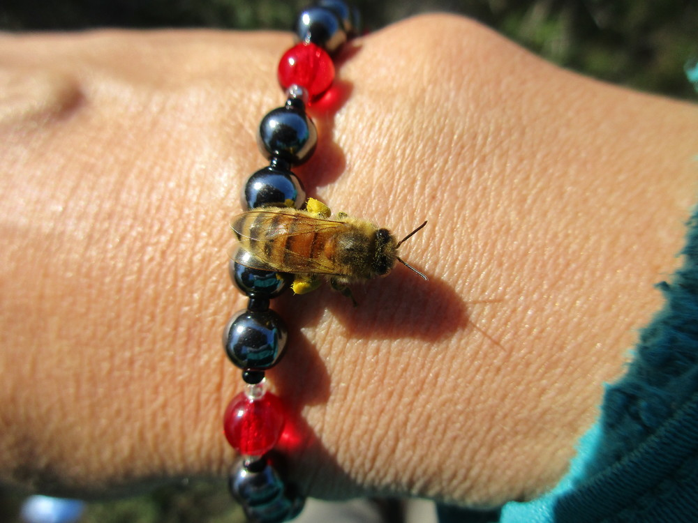 I took off my awkward gloves to handle the camera, and a curious bee landed on my wrist.