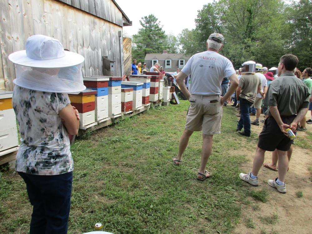 Bee demo. Adam is the guy in the white t-shirt, behind the bee hives. Each of those bee hives have bees.