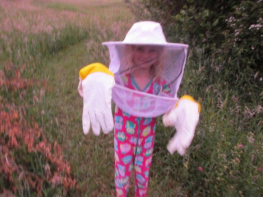 "June 2016. Alex the beekeeper (in her pajamas as it is actually bedtime). She's ""helping"" Mummy install two new packages of bees into their new hives."