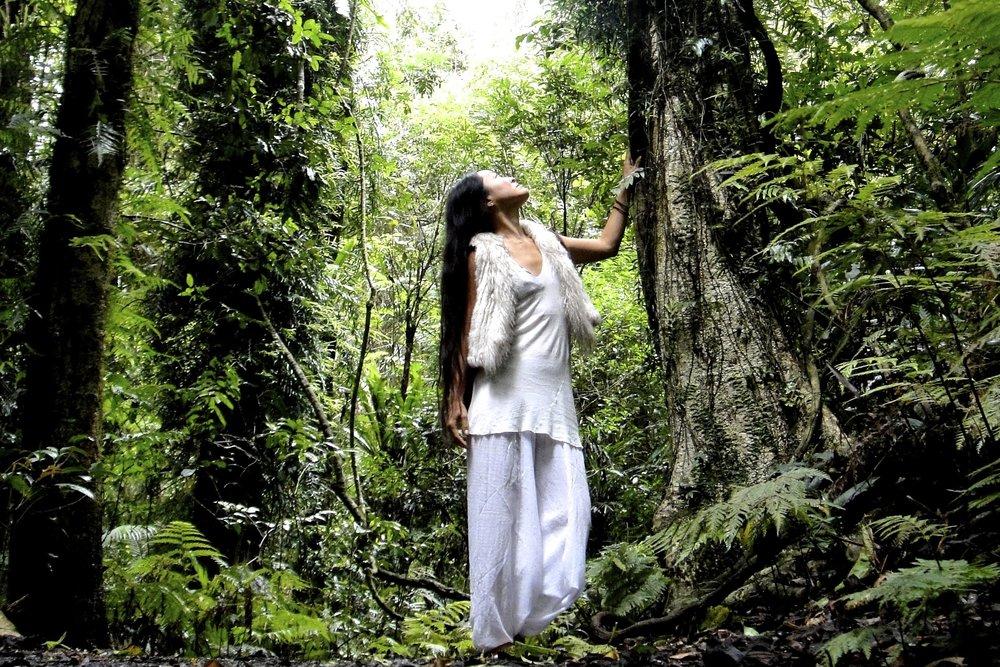 18, Rain forest Australia 2010 .JPG