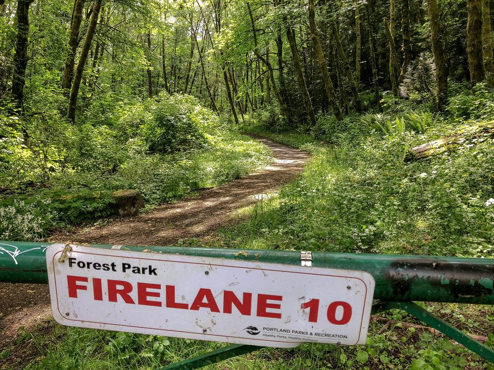 Firelane one park