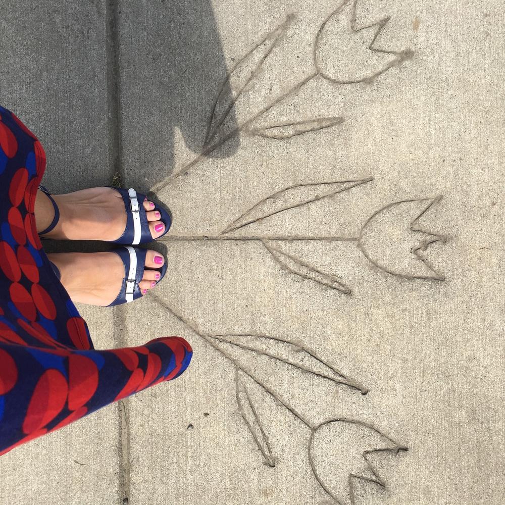 Local adventures like tulip seeking