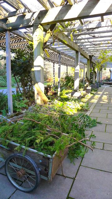 Gifts & Greens Galore Arboretum