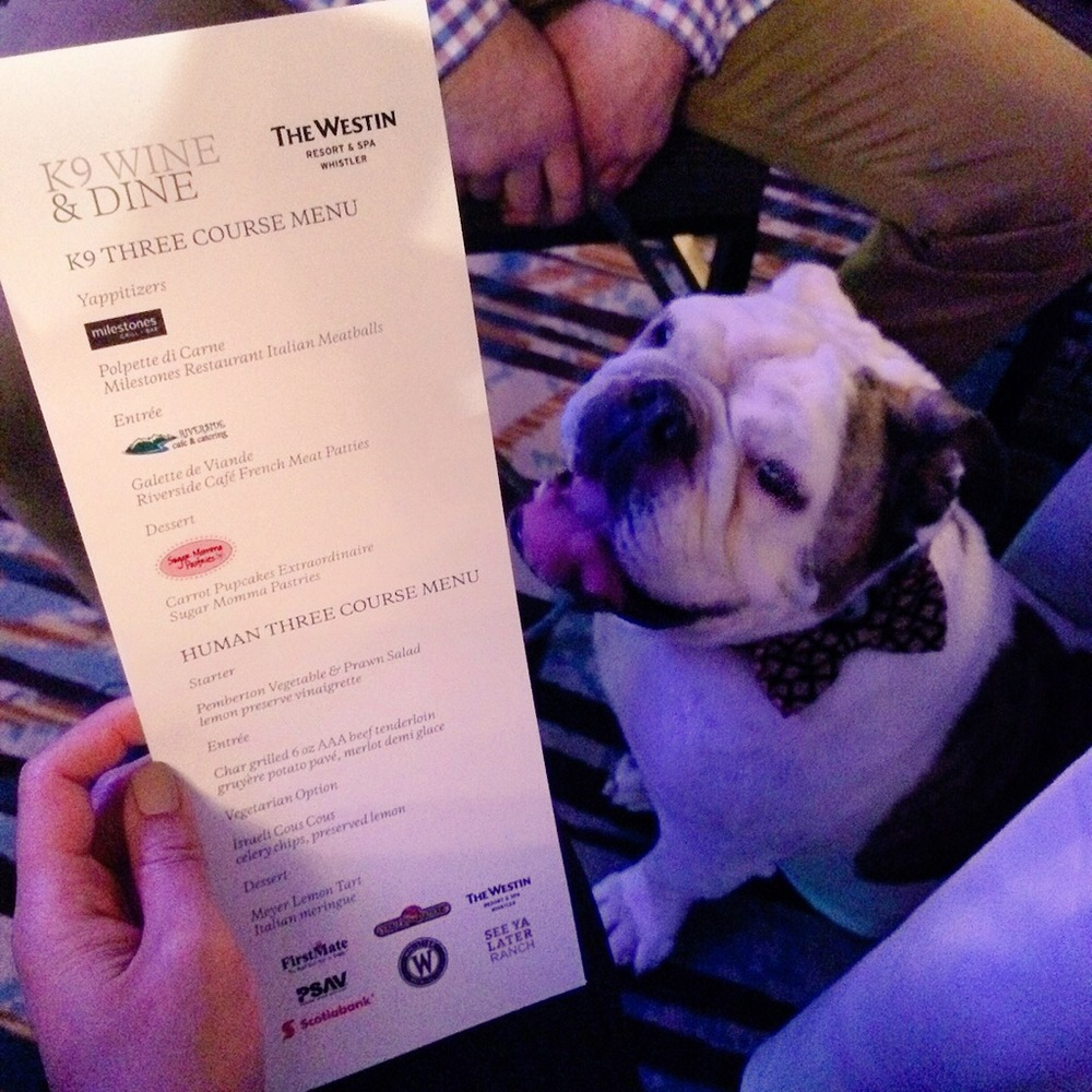 Three-course menu for Spike, and for the humans!
