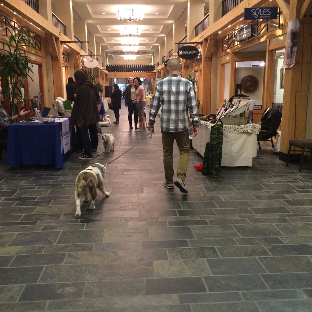 The Pet Marketplace at The Shops in Westin