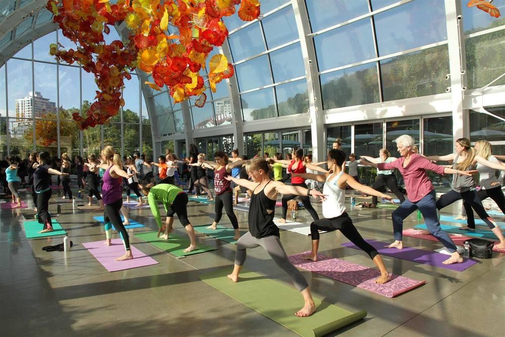 Yoga Under Glass