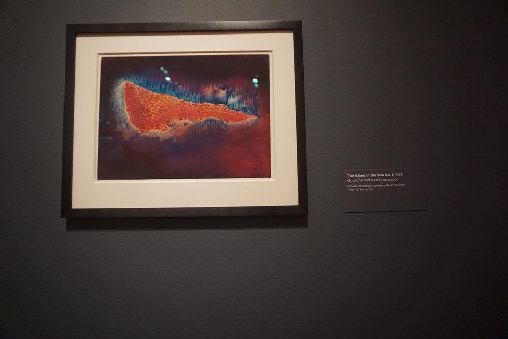 Yayoi Kusama -Seattle Art Museum 10.jpg