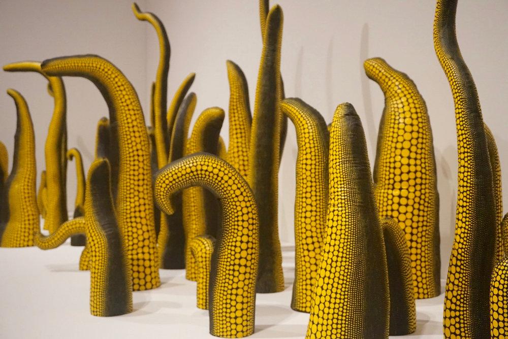 Yayoi Kusama -Seattle Art Museum 25.jpg