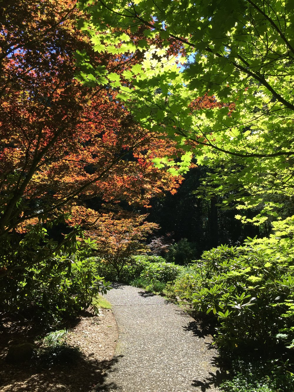 The Grotto Portland 6.JPG
