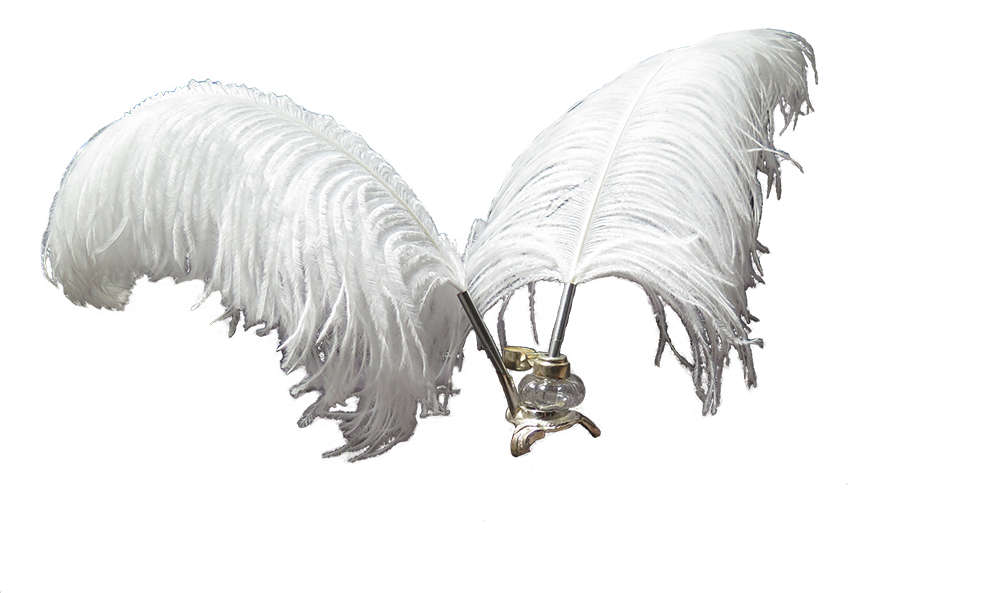 "<strong>white quill set</strong><a href=""http://www.eventier.com.au/white-feather-quills"">Find out more »<a>"