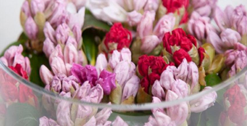 Rododendon_Blomsterideer