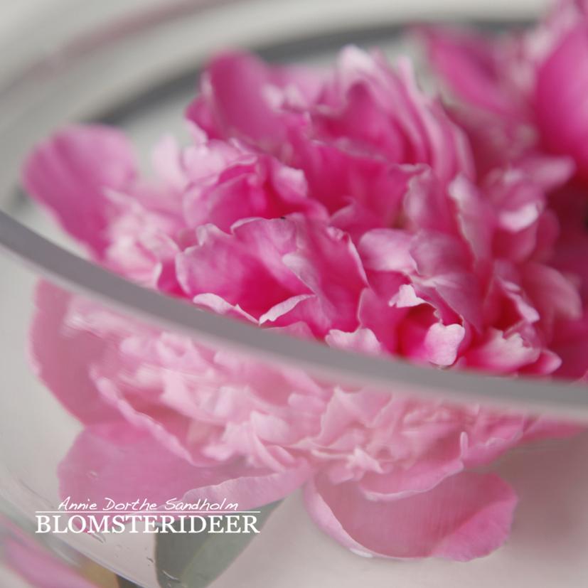 blomsterdekorationer, blomsterinspiration, blomster, Blomsterdekoration, bordpynt, festborde, blomsteropsætning, bonderose, pæoner, paeonia, Blomsterdekoration, blomsterinspiration, blomster