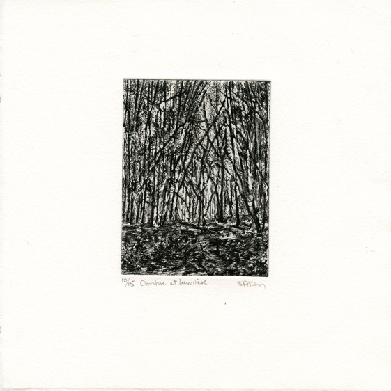 Allen, Suzie: Ombre et LumiereI etching
