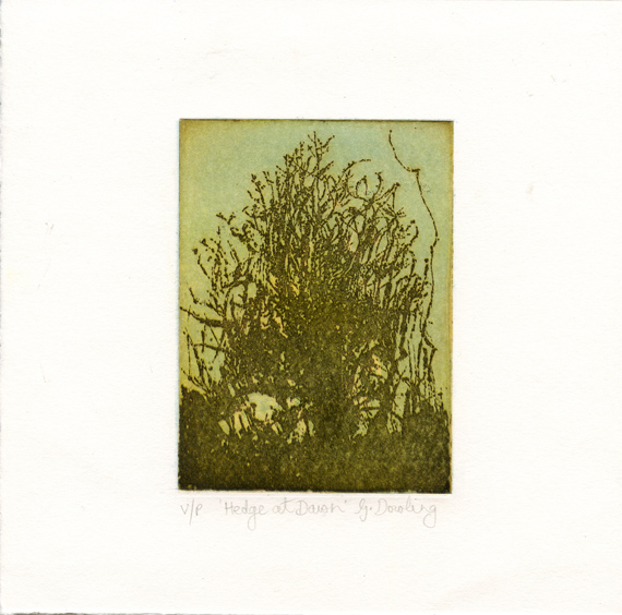 Dowling, Grainne: Hedge at Dawn sugar lift aquatint