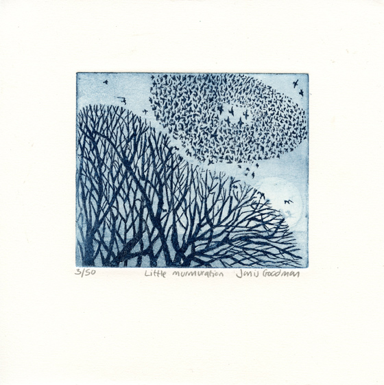 Goodman, Janis: Little Murmuration etching aquatint