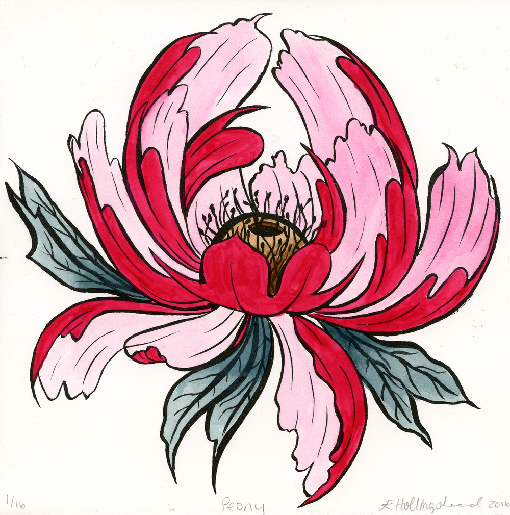 Hollingshead, Erin Peony lithography