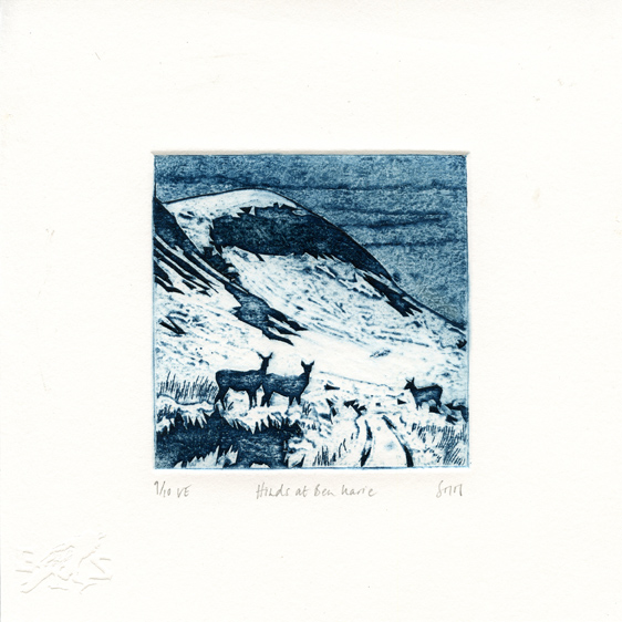 Mackenzie, Suzie: Hinds at Ben Warie collagraph