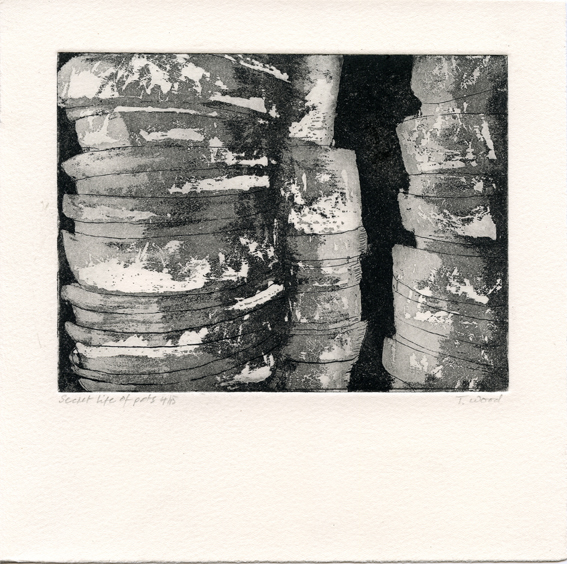 Wood, Theo: Secret Life of Pots etching