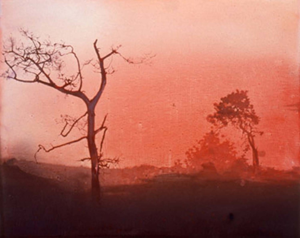 Fota Park (Red), 2000 oil on canvas 4' x 5'
