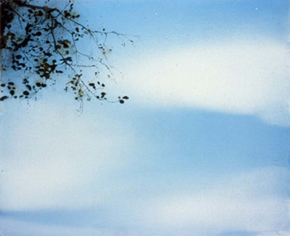 Sky/Branch, 2000 oil on canvas 4½' x 5'