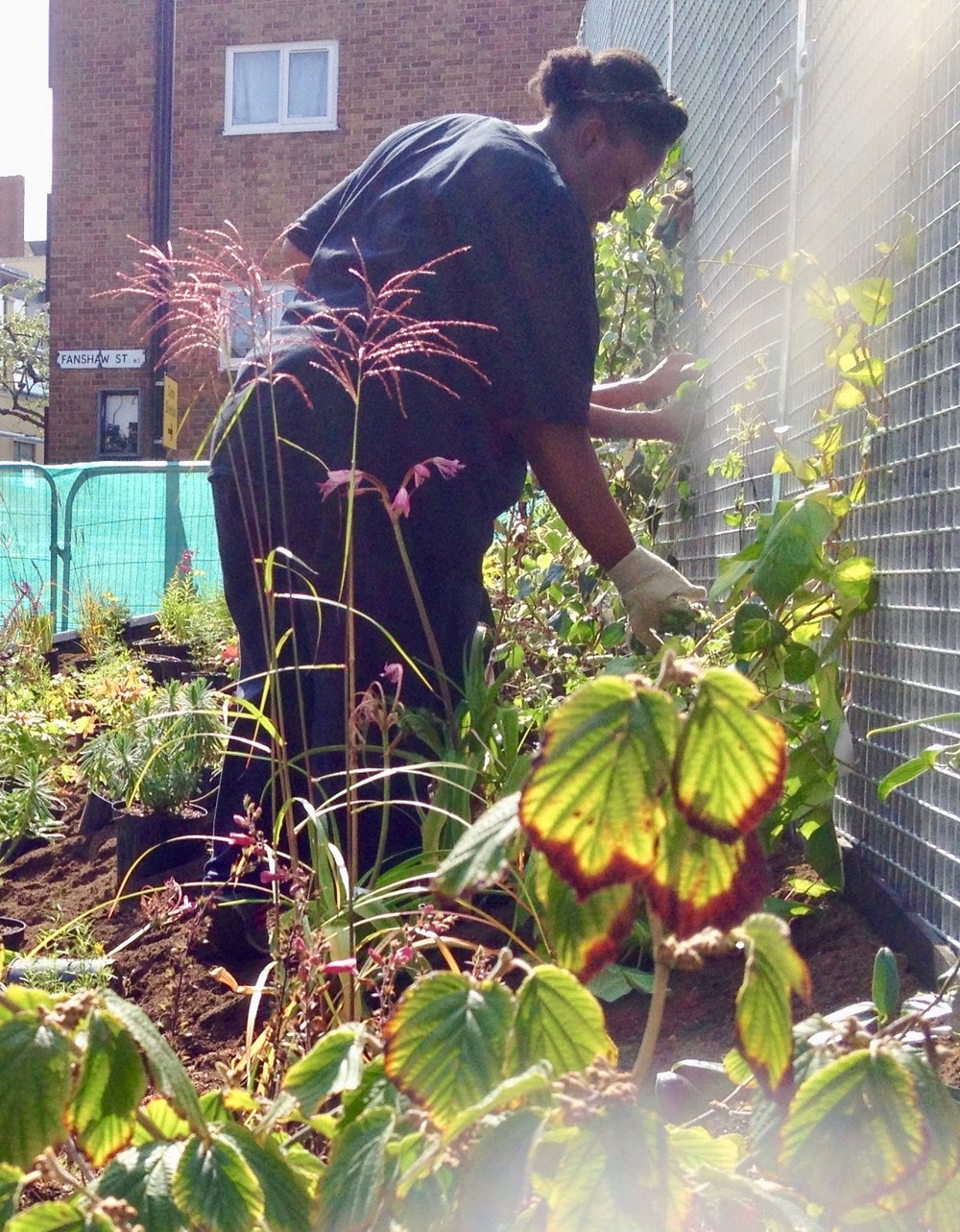 Khadija in September 2015, planting the new garden on Hoxton Street