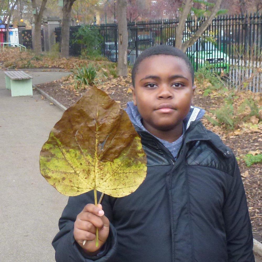 4 Seasons Autumn events