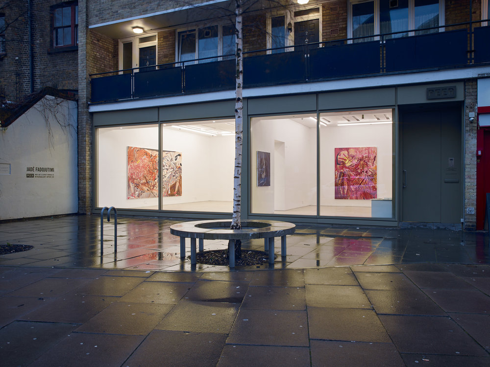 Installation Shot: Jadé Fadojutimi –  The Numbing Vibrancy of Characters in Play , Photo: Stephen White