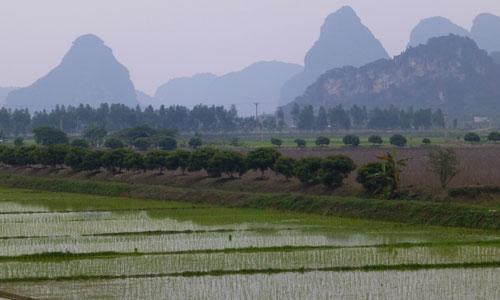 Ho Chi Minh | Vietnam    2013 02   2009 02   2008 02
