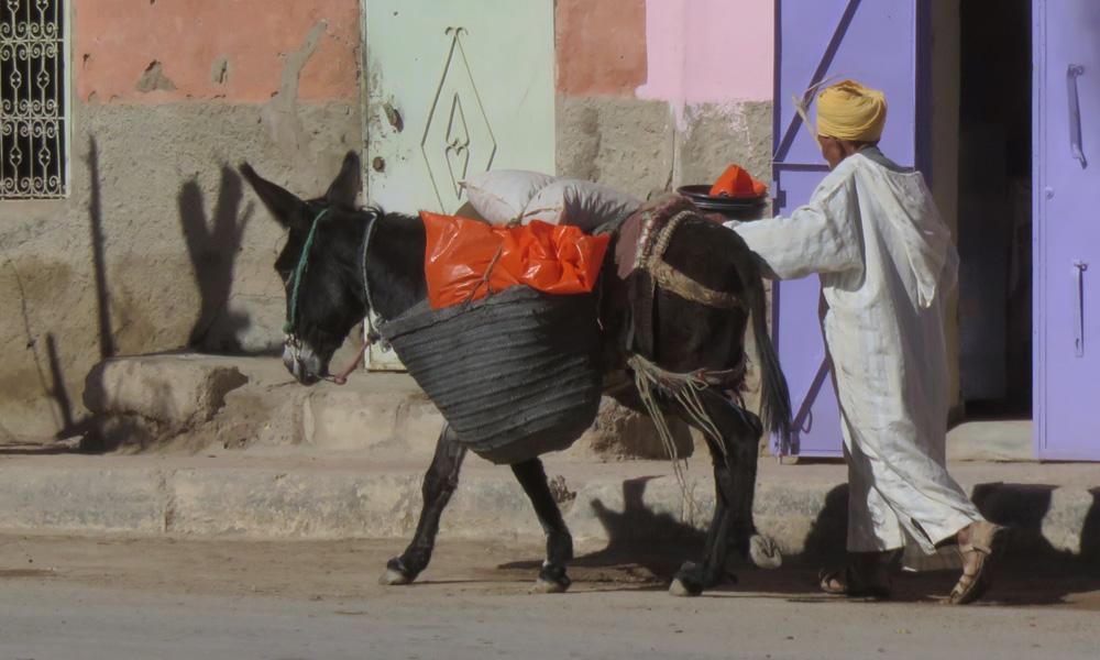 Marrakech | Marokko 201510 Osmo Aulamo