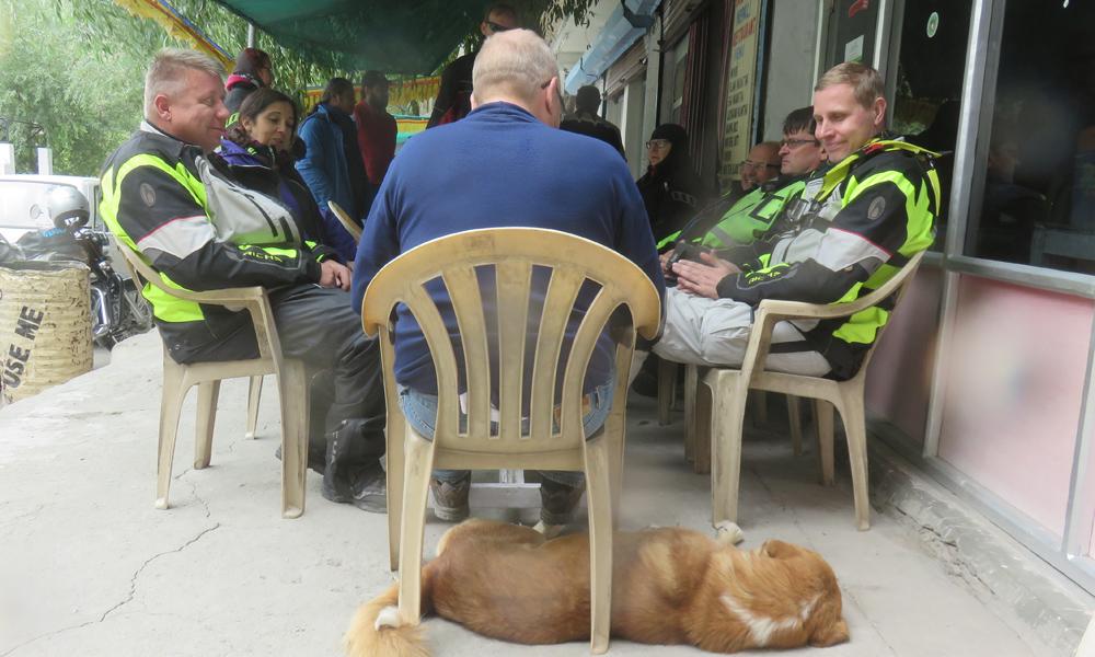 Launastauko... ja paikalliset koirat ovat aika reloja! :]