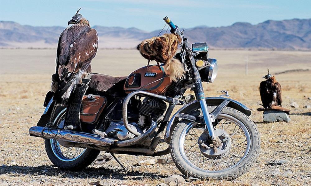 Gobi Dunes | Mongolia 201609