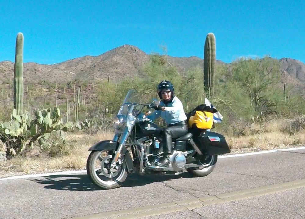 Arizonan upeissa kaktusmaisemissa kohti Californiaa.
