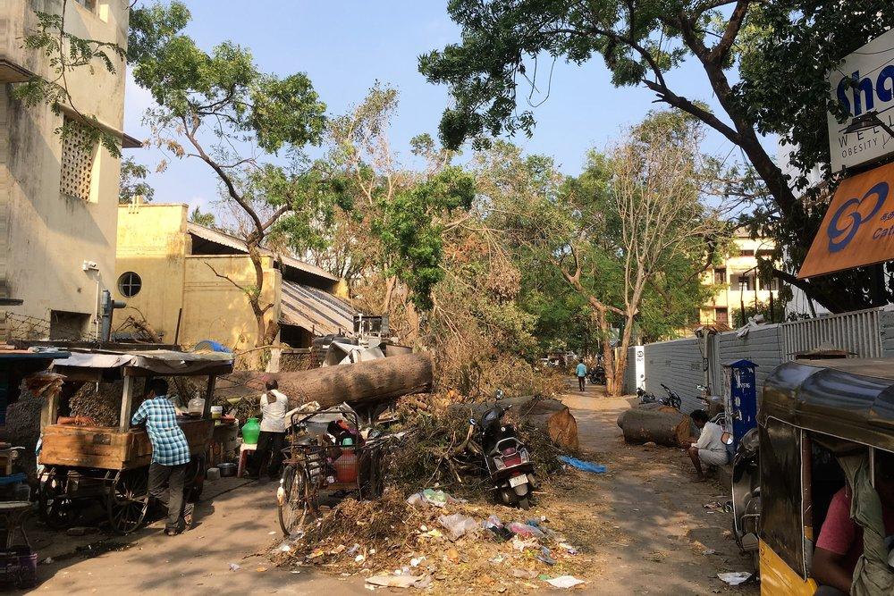 Kaatuneet puut ovat edelleenkin monien katujen blokkina....