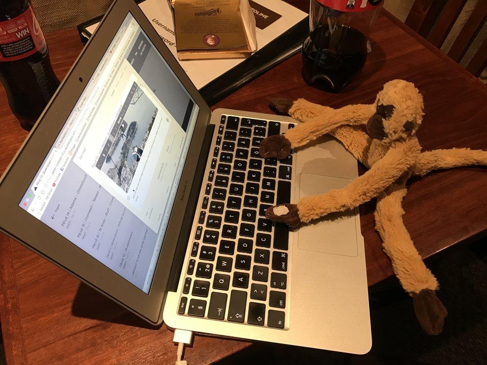 Pyryn ilta menee blogia kirjoittaessa ;)