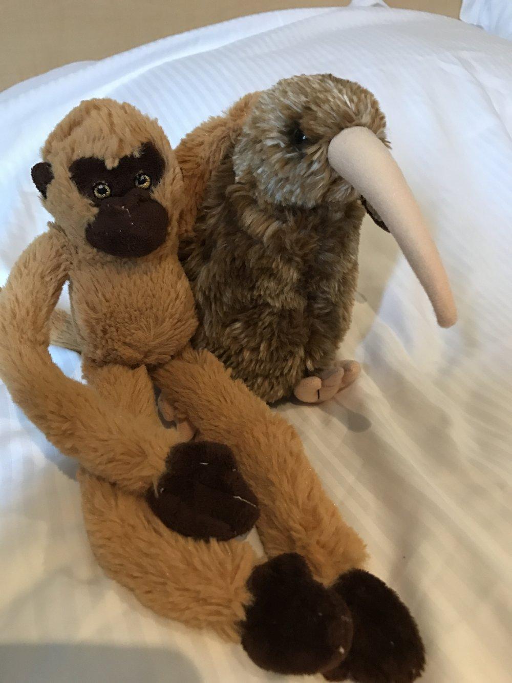 Joskus romantiikkakin kukoistaa moottoripyörämatkoilla - Pyry löysi uuden heilan Uudesta-Seelannista. Emma muutti Pyryn kanssa samassa matkalaukussa Suomeen. Love is in the air!