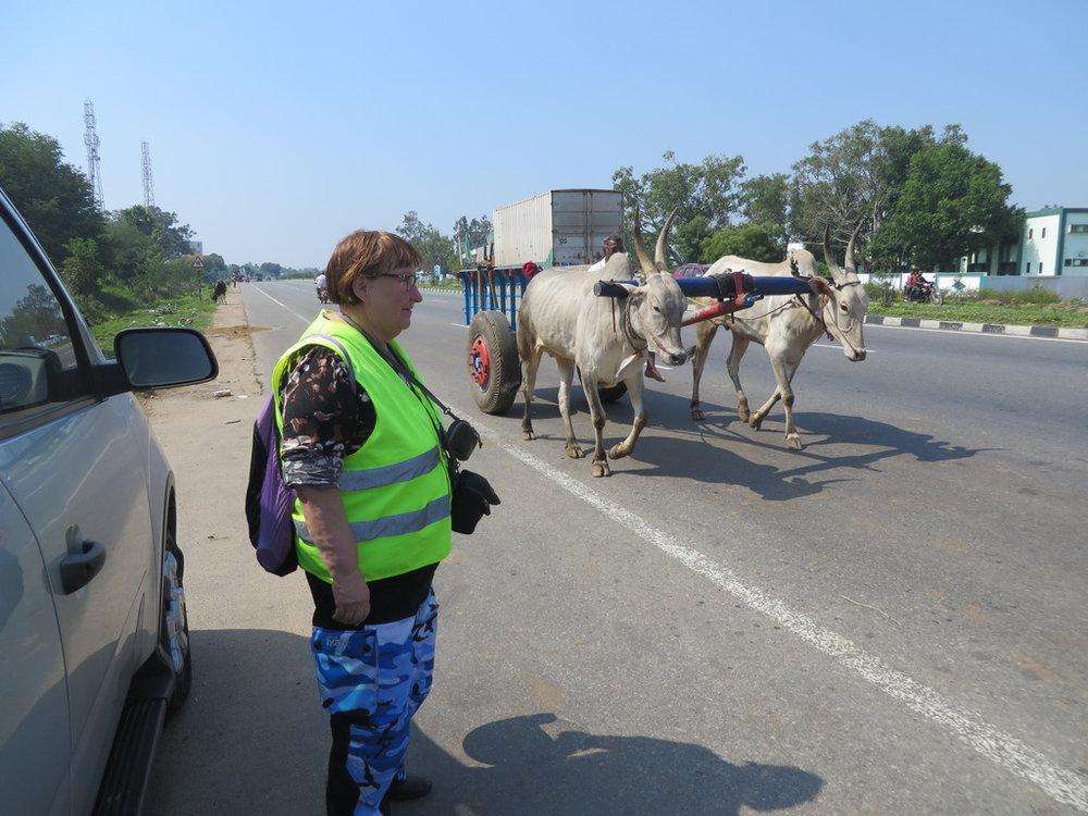 Seebut varustettu moottoritiellä kulkua varten. Maassa on vasemmanpuoleinen liikenne mutta seebuja ei ole informoitu asiasta.
