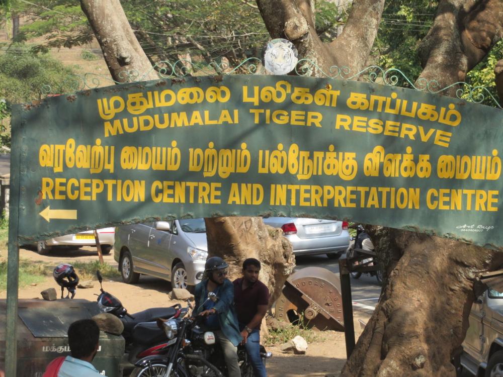 Hyvän ja vasta päällystetyn tien varrella oli elefantin ja tiikerin kuvilla koristeltuja mainoskylttejä. Olimme saapuneet Amaramblan villieläinpuistoon. Nyt olisi ainutlaatuinen tilaisuus nähdä noita eläimiä luonnossa.