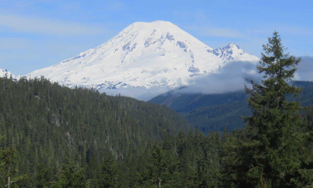 Mt Reinier
