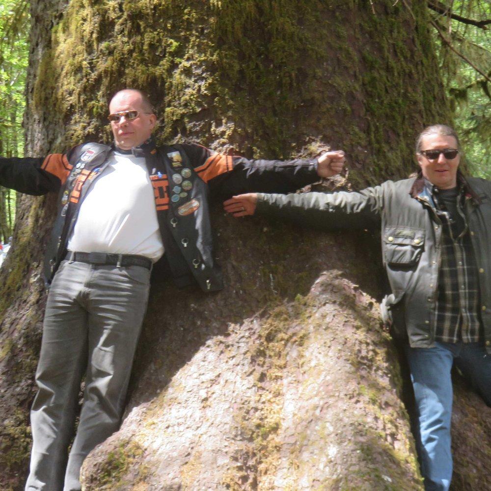 ... Mika ja Lasse koittavat lennättä puuta!