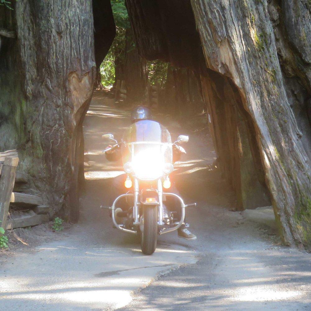 ... tai ajaa moottoripyörällä!