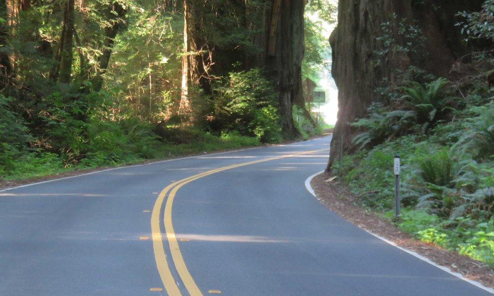 Avenue...