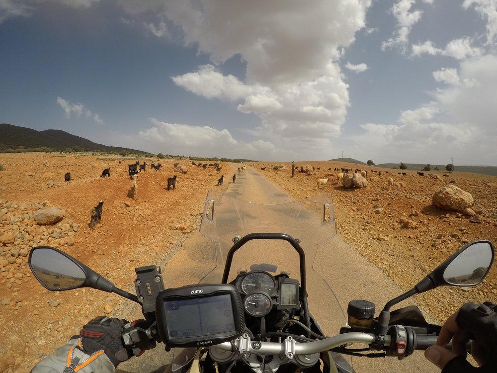 Klo 14.17 - ollaan korkealla vuoristossa, jossa Berberikansa asuu!
