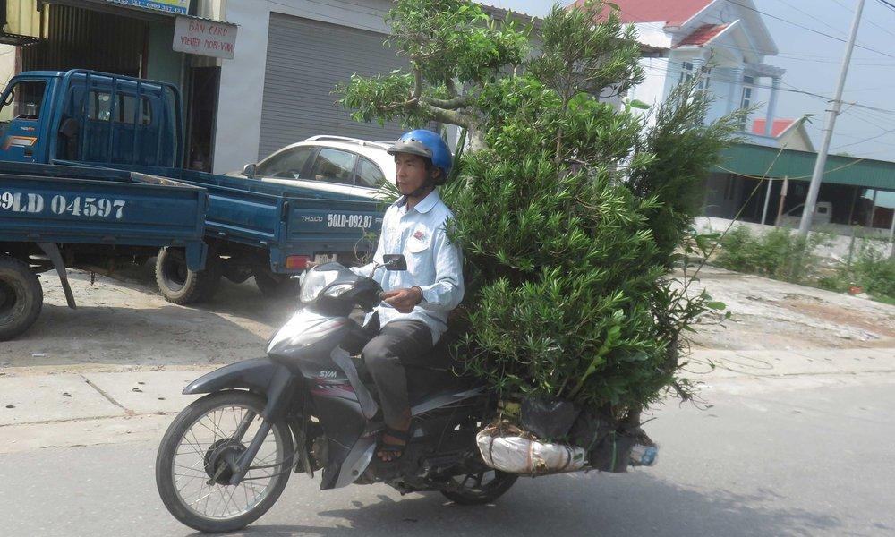 Kaikkea se Vietnam...