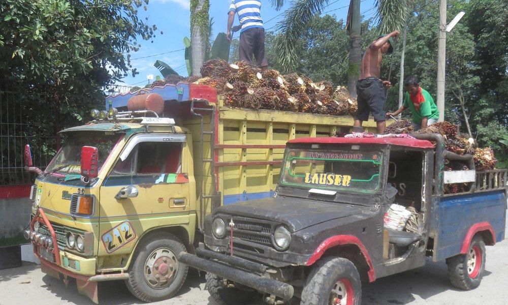 Ja palmuöljy markkinapäivä...